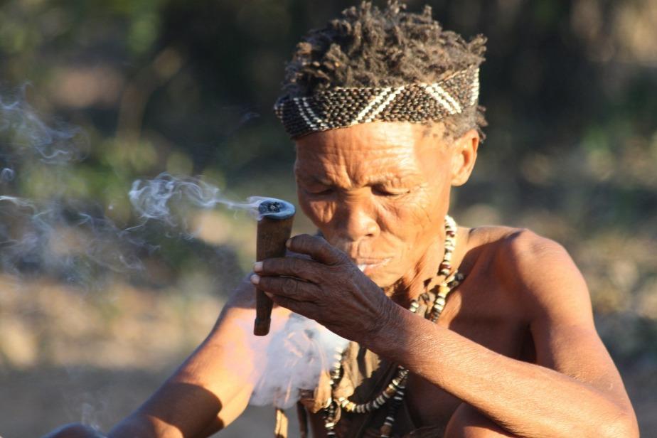 N'achetez plus de tabac, des dizaines de plantes sefument…
