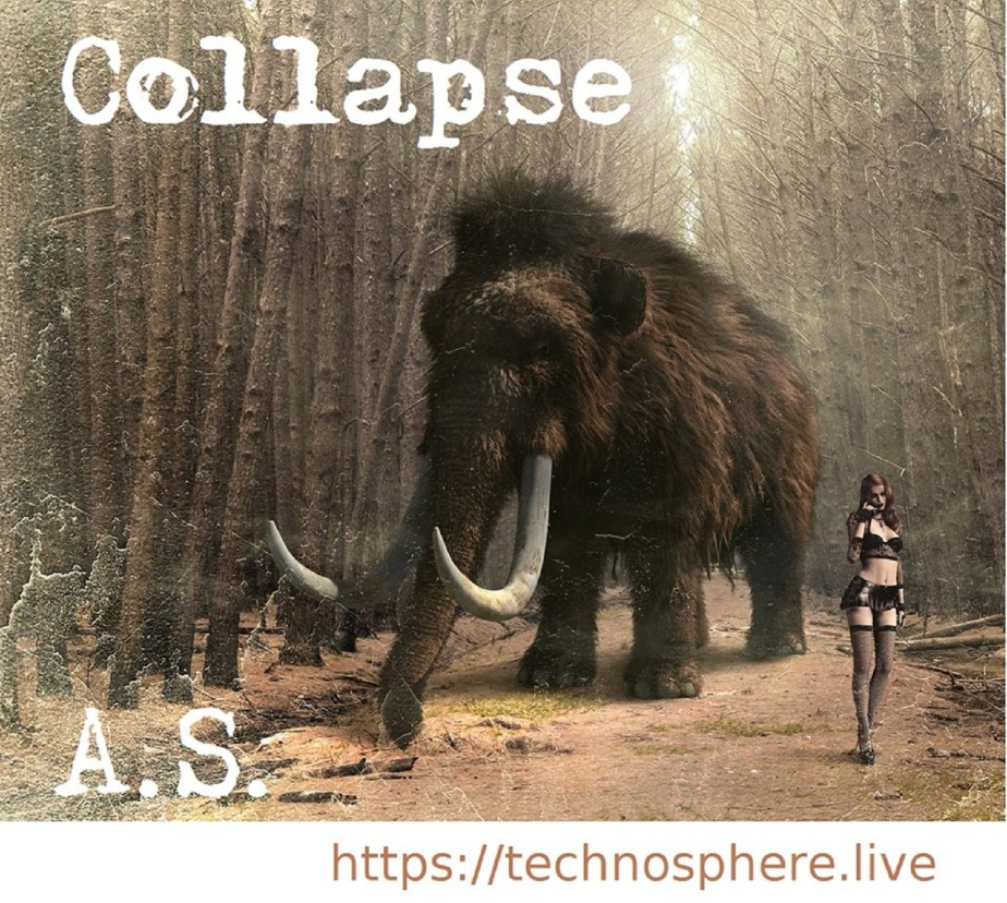 A techno track about #collapse by Anna Scheele
